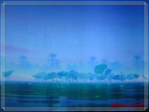 2011-08-01 185.jpg