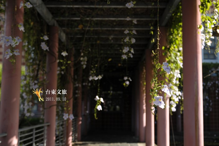 DSC_1573.jpg