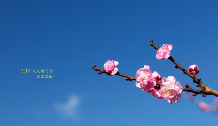 DSC_6670.jpg