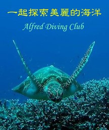 alfred_diving