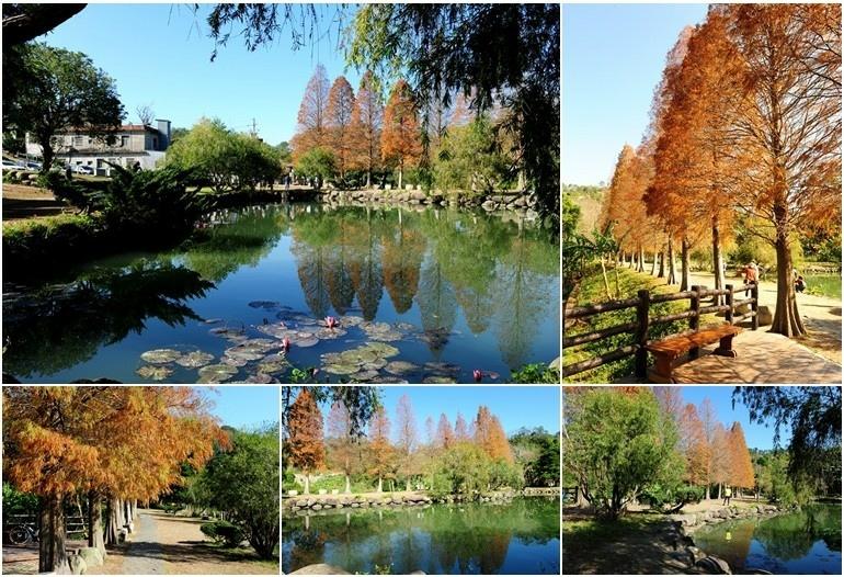 six_pond.jpg