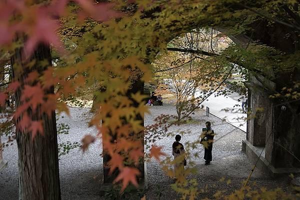 京都 南禪寺 (kaihung hsu)