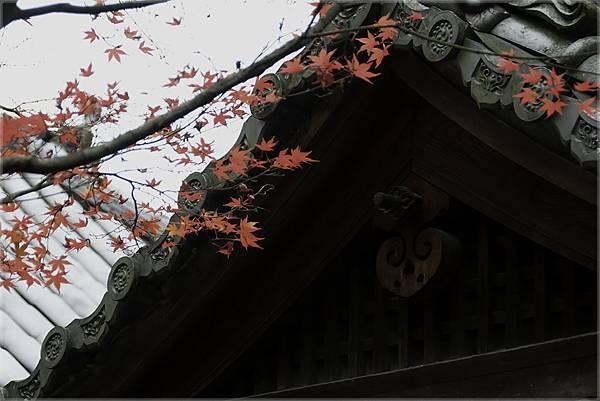 京都 永觀堂 (kaihung hsu)