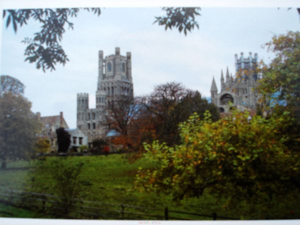 Ely cathedral 小卡
