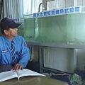 石岡壩管理中心守衛室養魚為水質安全把關