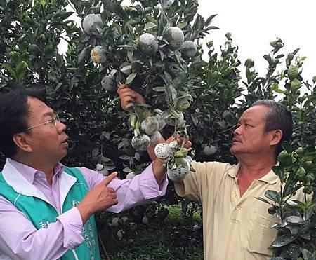 謝志忠:照顧農民政府不能只做半套