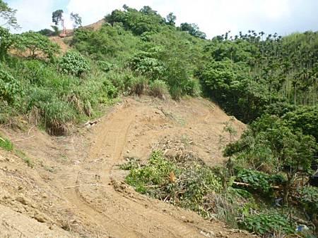 山坡地遭違規開挖整地市府開罰