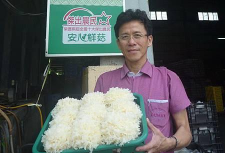 石岡菇農莊文豐栽培銀耳成功量產上市