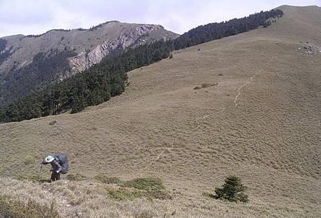 雪山西稜登山步道元月初重新開放