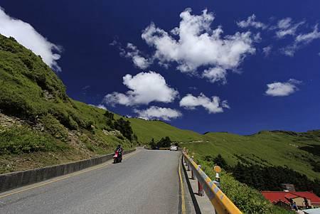 金雞報喜遊合歡山、梨山、福壽山