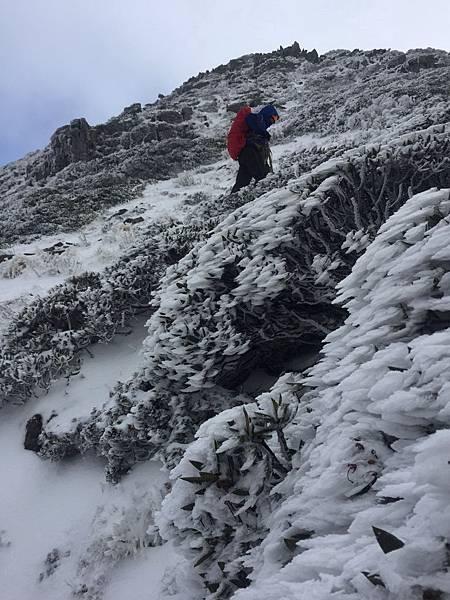 雪山步道積雪吳建宏2.jpg
