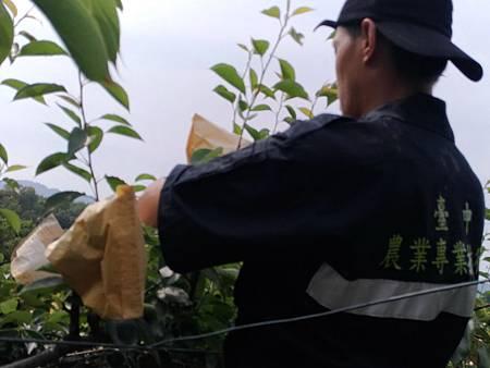 N農業技術團13.jpg