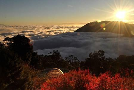 H大雪山雲海楓紅.jpg