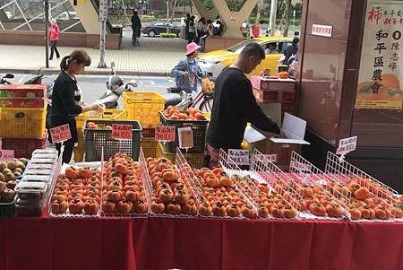 H北上售甜柿1.jpg