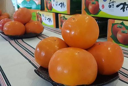 H甜柿.jpg