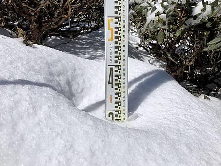 N雪霸積雪1.jpg