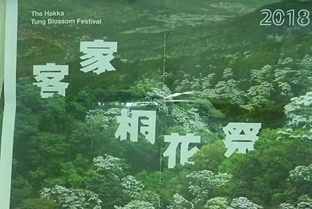 H桐花祭季.jpg