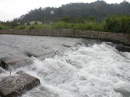 N食水嵙溪.jpg