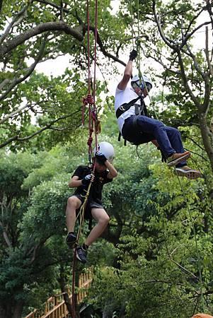 中華攀樹體驗.jpg