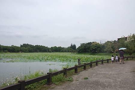 H林業文化園區8.jpg