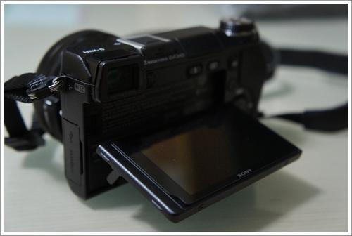 DSC09506