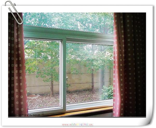 透過窗戶向外看