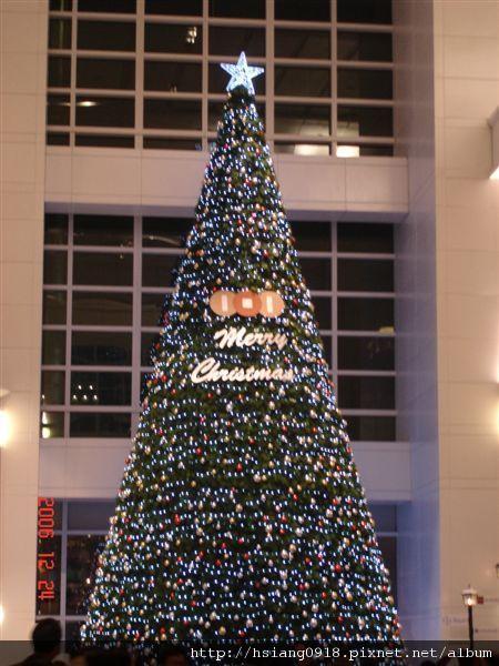 101辦公大樓內聖誕樹