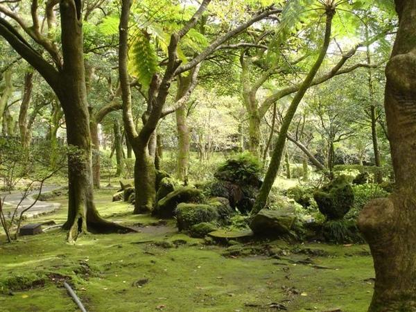 2008.10 陽明山前山公園