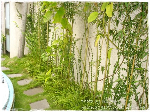 觀月套房~私人庭院