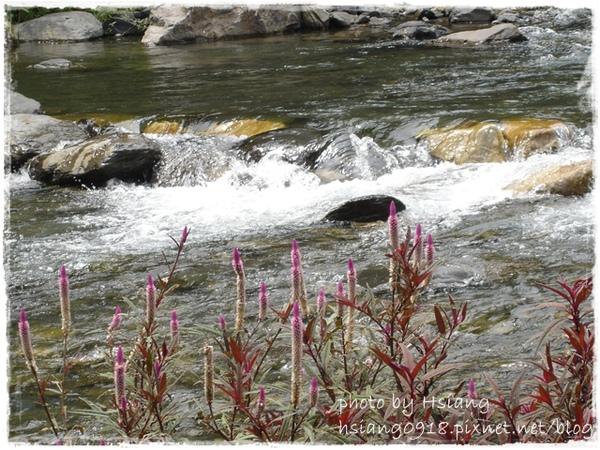 五峰旗風景區遊客中心前溪流