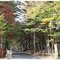 輕井澤KARUIZAWA前往雲場池