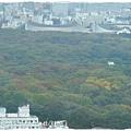 飯店房間VIEW~代代木公園