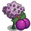 tree_plum_icon.png