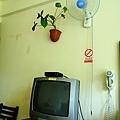 DSCN8980.jpg