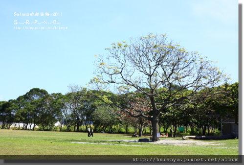 P0227卑南文化園區-- (12).jpg