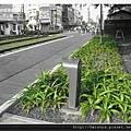 鐵道博物館 (2).JPG