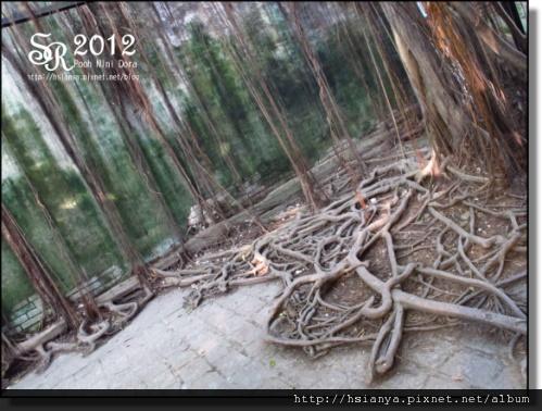 201201出發台南 (19).JPG