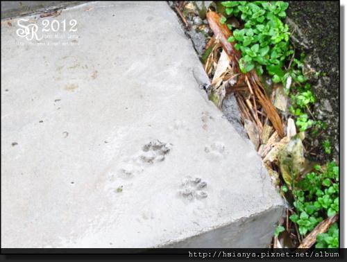2012-2D猴硐 (23).JPG