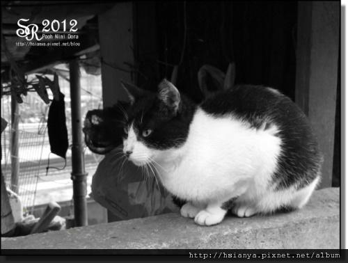 2012-2D猴硐 (27).JPG