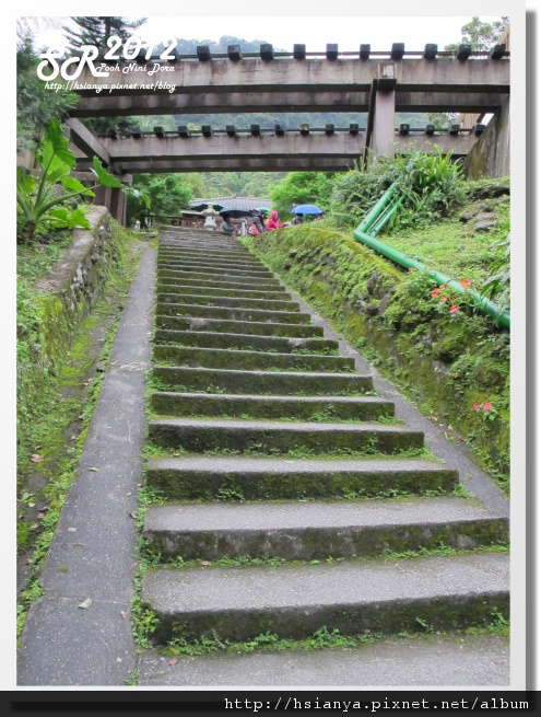 0310林田山 (3)