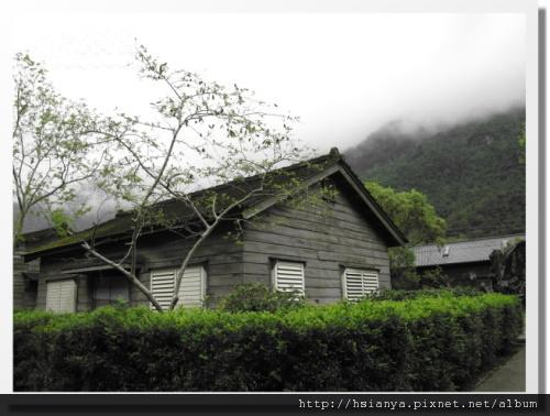 0310林田山 (7)