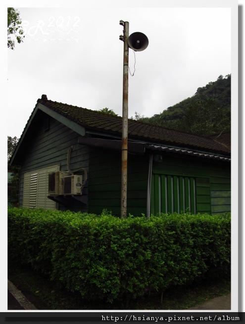 0310林田山 (15)