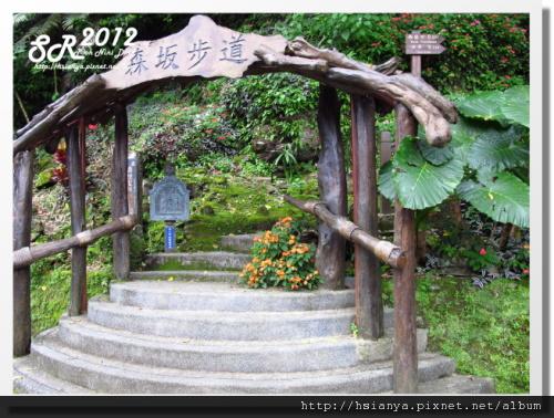 0310林田山 (17)