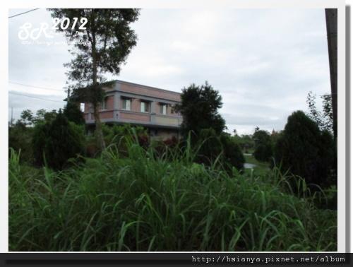 0312綠野森林 (16)