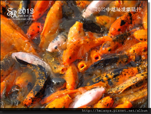 2012-06清秀山 (15)