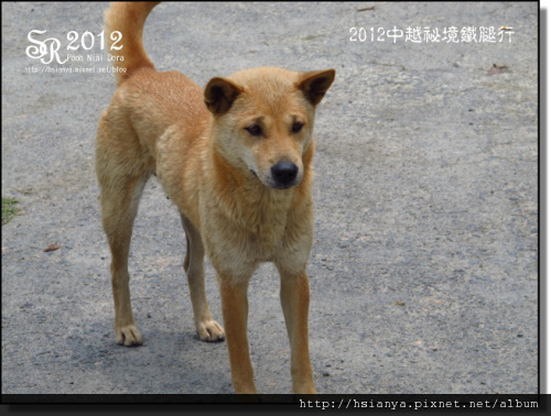 2012-09龍宮仙境 (47)