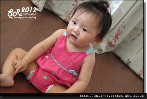 201205小隻 (2)