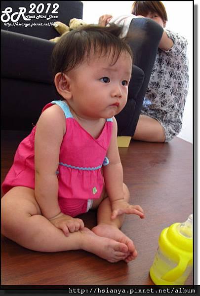 201205小隻 (3)