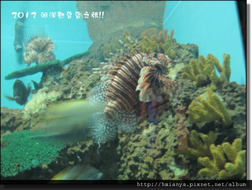 20120714海洋公園 (10)