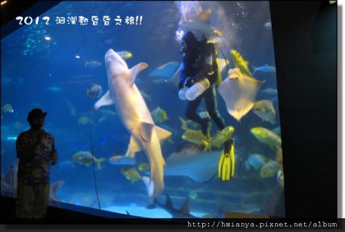 20120714海洋公園 (12)